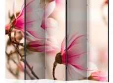 Paraván - Branch of magnolia tree II [Room Dividers]
